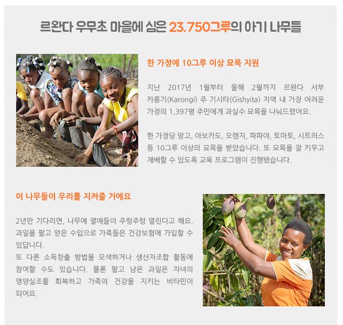 르완다 우무초 마을에 심은 23,750그루의 아기 나무들.한 가정에 10그루 이상 묘목 지원. 지난 2017년 1월부터 올해 2월까지 르완다 서부 카롱기(Karongi) 주 기시타(Gishyita) 지역 내 가장 어려운 가정의 1,397명 주민에게 과실수 묘목을 나눠드렸어요.한 가정당 망고, 아보카도, 오렌지, 파파야, 토마토, 시트러스 등 10그루 이상의 묘목을 받았습니다. 또 묘목을 잘 키우고 재배할 수 있도록 교육 프로그램이 진행됐습니다. 이 나무들이 우리를 지켜줄 거에요. 2년만 기다리면, 나무에 열매들이 주렁주렁 열린다고 해요. 과일을 팔고 얻은 수입으로 가족들은 건강보험에 가입할 수 있답니다. 또 다른 소득창출 방법을 모색하거나 생산자조합 활동에 참여할 수도 있습니다. 물론 팔고 남은 과일은 자녀의 영양실조를 회복하고 가족의 건강을 지키는 비타민이 되어요.