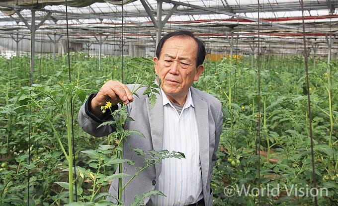 채소 사업장에서 작물 상태를 점검중인 함영일 자문