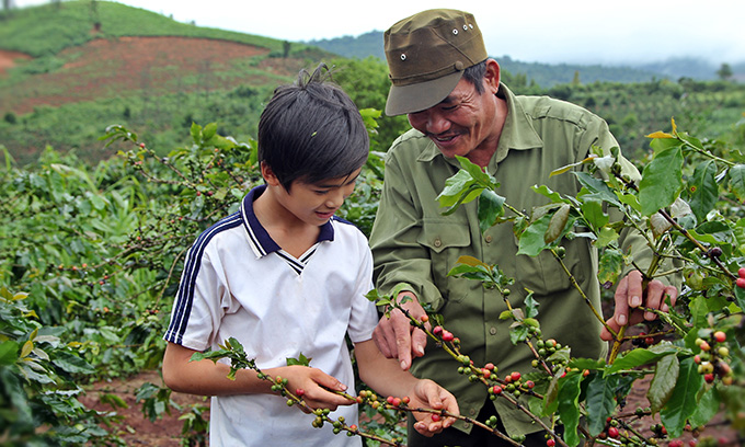 커피콩 따는 법을 알려주는 민의 아버지. 민은 틈틈히 몸이 아픈 아버지를 도와 밭일을 거들곤 한다. 부모님은 그런 민을 세상에서 가장 소중한 선물이라고 말한다.