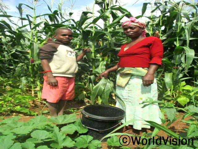 월드비전의 식량안보 프로젝트 덕분에 여러 가정이 농사 진 작물을 팔아 자립할 수 있게 됐습니다.