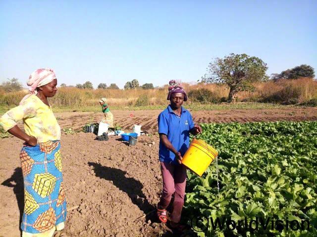 농업협회 회원들은 시장에 팔기 위해 밭에 물을 주며, 정성스레 채소를  재배합니다. 월드비전의 농업 교육 덕분에경작을 하면서 소득이 생겼고, 아이들 지원은 물론이고 가정 생계를 안정적으로 유지하고 있습니다.년 사진