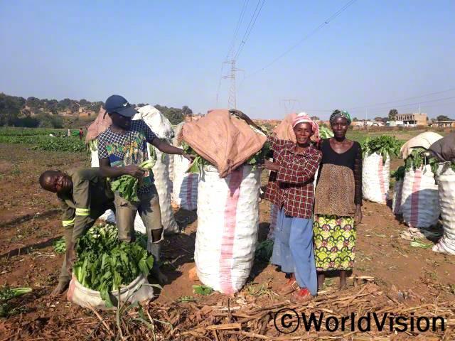 농민조합 회원들이 재배한 채소를 판매하여 지역 독서교실에서 학습자료를 구비할 수 있도록 돕습니다.년 사진