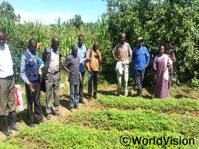 농부들이 농사학교에 참여해 수확량을 늘리기 위한 교육을 받고 있습니다.년 사진