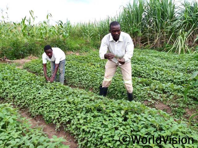 저희 집 농사 수확량이 그리 좋지 않았어요. 이제 새로운 농사 기술을 배우고 나니 더 많은 채소를 재배하고 있고, 아이들에게 필요한 만큼 돈을 벌 수 있게 되었어요. -이그나체(아버지, 장화를 신고 있는 사람)년 사진