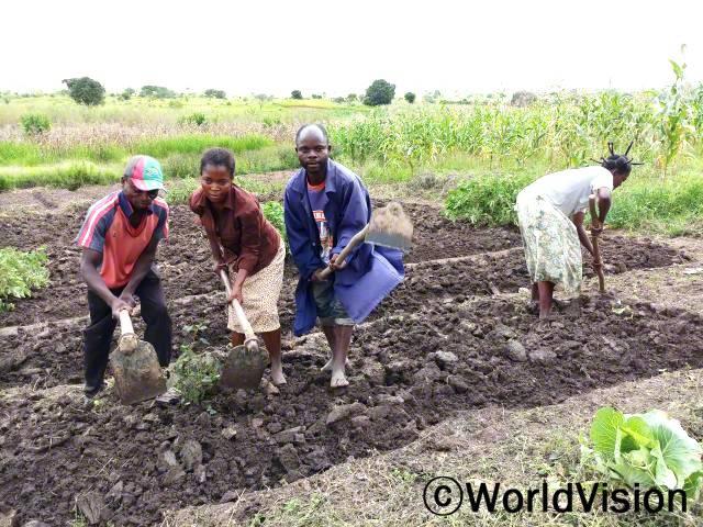 알리(파란색 자켓을 입은 사람)와 그의 아내, 그리고 농부조합에서 만난 친구들이 작물을 심기 위한 새 땅을 준비하고 있어요.년 사진