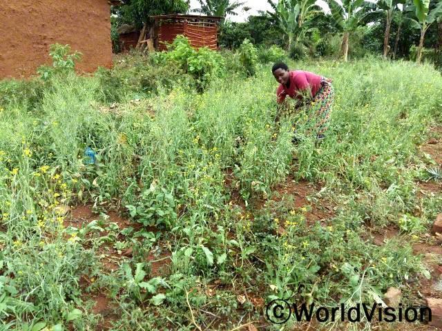 아이들 식사에 꼭 야채를 넣고 있어요. 덕분에 아이들이 건강하답니다. - 아니타(모) 월드비전은 주민들에게 텃밭이 주는 장점을 알려주며 주민들의 영양상태가 개선되고 더 건강해 지도록 돕습니다.년 사진