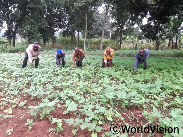 """후원아동의 부모들은 월드비전의 텃밭 가꾸기 훈련을 받아 채소를 수확하고 있습니다. """"우기 동안 텃밭에 씨앗을 심어서 올해 가족의 끼니를 해결할 수 있을 만큼 충분한 양의 채소를 수확할 수 있었어요.""""년 사진"""