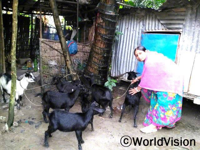 자리아 부족 내 카리초론 도도라 마을에 사는 디파(38세)는 소득증대사업 멤버입니다. 디파는 2년 사이 염소를 30마리로 늘렸습니다. 염소 17마리를 제외한 나머지를 지역 축산물 시장에 약 625달러를 벌었고, 이 돈을 아이들 교육과 생활비에 사용했습니다.년 사진