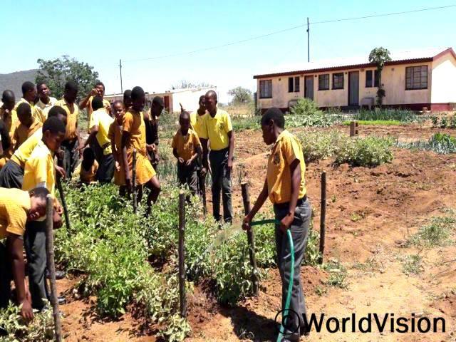 학교에 수도를 설치해 주셔서 월드비전에 감사드려요. 이제 저희는 학교 텃밭에서 농작물을 키우면서 농사 연습을 할 수 있게 됐어요. -마흘레(11세)년 사진