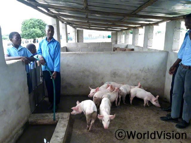 """""""전에는 학교에 수도시설이 없어서 가축을 키우기가 힘들었는데 월드비전의 도움으로 학교에 수도시설이 생긴 덕분에 '돼지 키우기 프로젝트'를 시작할 수 있게 되었어요."""" –테메빈코시(14세)년 사진"""