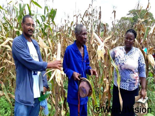 마을 농부들이 생산한 농산물을 수확합니다. 친환경 농업 기술 교육을 받고나서, 농업 생산량이 증가하였습니다.년 사진