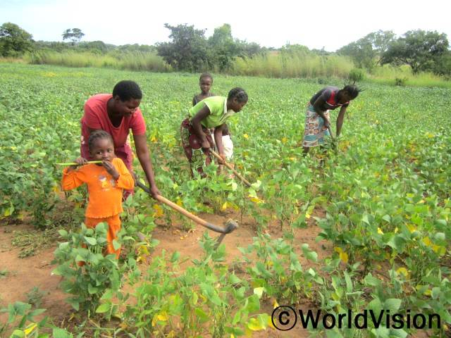 """후원자님의 도움으로 월드비전은 마을 주민들에게 콩과 야채 등의 농작물 관리에 대한 훈련을 제공했고 이를 통해 주민들은 다양한 농작물을 기를 수 있게 되었습니다.""""저희에게 농업기술을 가르쳐주셔서 감사해요."""" 다섯 명의 딸을 둔 마그렛씨(30세)는 말했습니다.년 사진"""