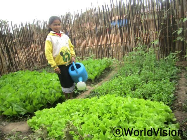 """""""우리 집에 이렇게 멋진 텃밭이 생겨서 정말 자랑스러워요. 친구들에게도 텃밭 가꾸는 방법을 알려줄 거예요."""" 마을 아동, 아모갓(13세)은 말했습니다. 월드비전 농 사업장에서는 마을 주민들에게 텃밭에서 채소를 재배하는 농업기술을 전수했습니다.년 사진"""