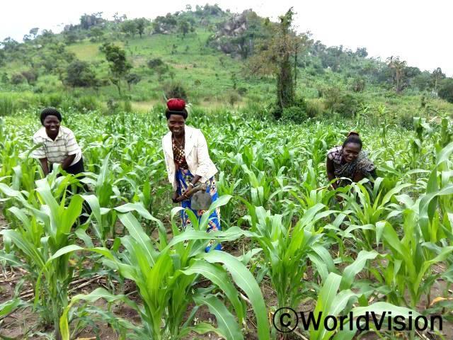 이제 현대식 농법으로 농사 짓는 법을 알게 되었어요. 마리(농부)가 말했습니다. 월드비전은 지역사회 농부들을 대상으로 지역사회 내 식량 생산량 증가를 위한 수확 전 후 농사법에 대한 교육을 지원했습니다.년 사진
