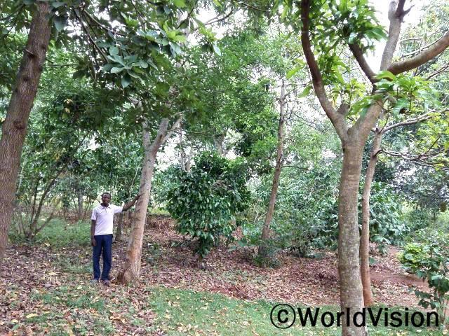 우리 마을 환경이 좋아졌어요. - 마티아스(15세) 월드비전은 마을 농부들에게 환경을 보존할 수 있는 친환경 농사법을 알려줍니다.년 사진