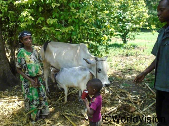 암소 지원취약가정에 암소를 지원하여 아동들이 우유를 마실 수 있게 되고 가계소득에도 도움이 되고 있습니다.년 사진