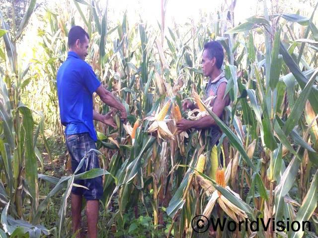 """""""전에는 구멍 하나에 5-6개의 옥수수 씨앗을 심어서 옥수수 수확량이 저조했어요. 하지만 월드비전의 도움으로 새로운 농사법을 배워 이제는 농작물 관리도 수월해지고 옥수수 생산량도 많이 늘었답니다."""" –함바년 사진"""