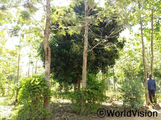 농부들은 환경보존 교육을 받아 마을을 안전하게 지키는 법을 배웠습니다.