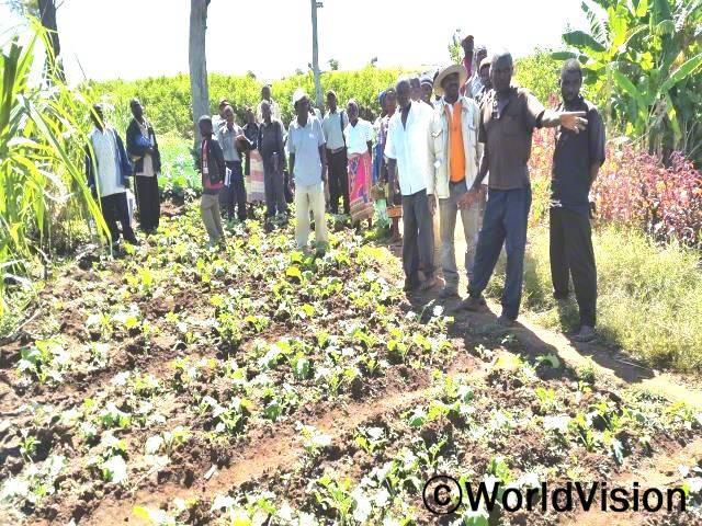 식량 보존농부들은 가족들과 오랫동안 보존하며 먹을 수 있는 채소를 생산하는 법을 배웠습니다.년 사진