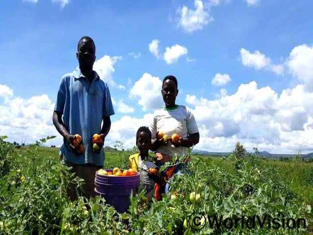 에바리스토와 가족들은 그들의 풍성한 수확물을 보여주고 있어요.년 사진