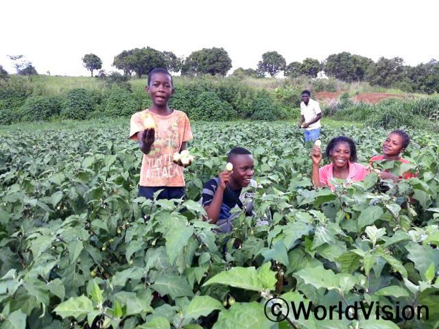 월드비전은 농부들을 대상으로 식품안전교육을 실시하였습니다. 아이들은 가지를 재배하는 것이 영양을 보충하고 생계를 유지하는 데 도움이 된다며 좋아합니다.년 사진