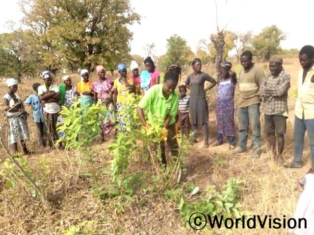 사막화를 예방하고자, 교육을 받은 마을 주민이 동료 농부들에게 나무를 심고 보호하는 방법을 시연합니다.년 사진