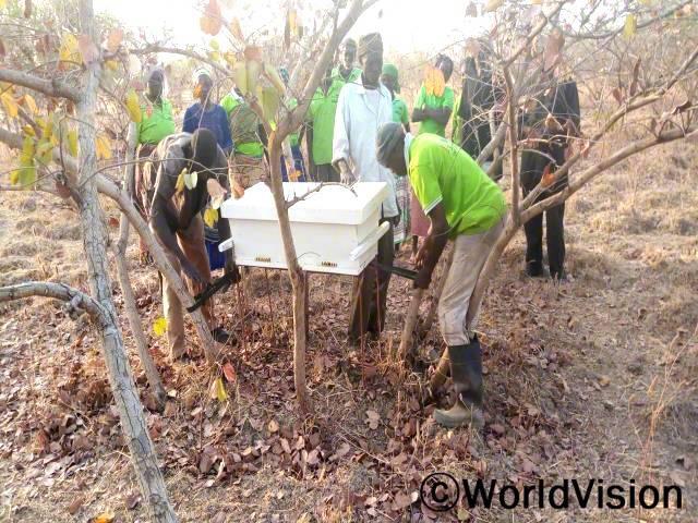 농부들이 벌집에서 꿀을 채취하고 있습니다. 이렇게 생산된 꿀은 가족 생계에 도움을 줍니다.년 사진