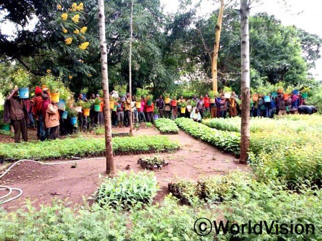 환경보호와 수질보호, 나무의 다양한 이점과 종자를 묘목으로 기르는 방법에 대한 교육을 진행했습니다. 교육을 들은 후, 지역사회 주민들이 자체적으로 그룹을 만들고 나무 묘목장을 만들기로 결정했습니다.년 사진