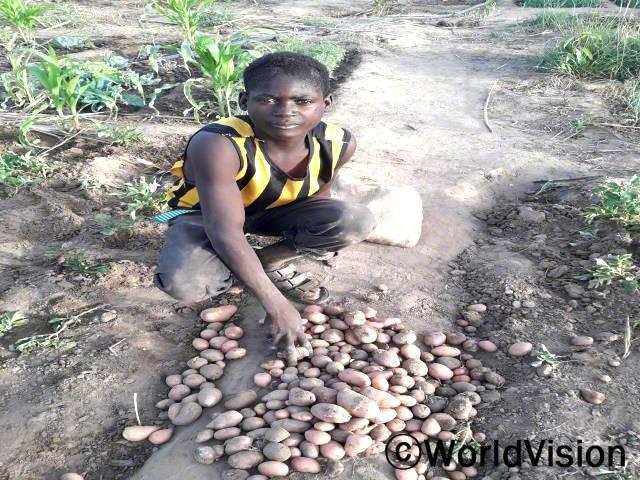 피델레는 마을 사업을 통해 받은 씨앗으로 감자 재배에 성공했습니다.년 사진