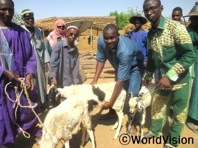가축을 잘 사육하는 법에 대한 훈련을 진행했습니다.년 사진