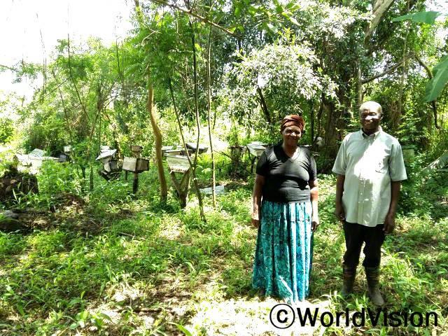 꿀을 팔게 되면서 가족들의 생필품을 살 수 있는 수입이 생겼어요. 데이비드(부모)가 말했습니다. 월드비전은 지역사회 경제 발전을 위해 주민들의 양봉사업을 지원합니다.년 사진
