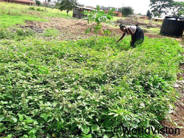 """월드비전은 아동의 균형 있는 성장을 지원하기 위해 마을 주민들을 대상으로 텃밭 가꾸기 훈련을 실시했습니다. """"이제는 텃밭에서 재배한 채소들로 아이들에게 영양이 풍부한 음식을 해줄 수 있게 되었어요."""" –이마큘렛(어머니)년 사진"""