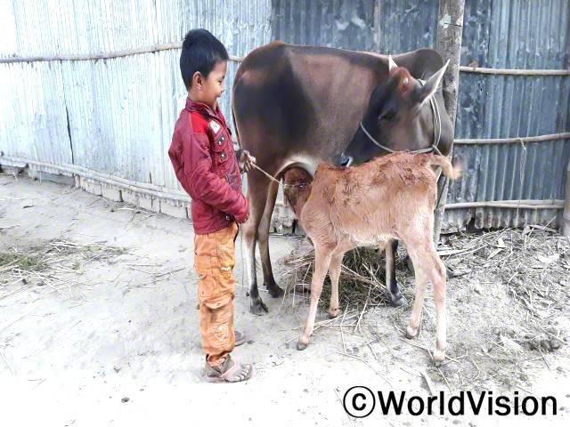 """""""저는 우유 마시는 걸 정말 좋아해요. 엄마가 젖소에서 우유를 짜서 주세요."""" - 아르코(5세)후원자님 덕분에, 아르코의 가정은 젖소를 지원받았습니다. 젖소를 키워 수입을 늘리고, 생산된 우유로 가족들 영양 보충도 합니다.년 사진"""