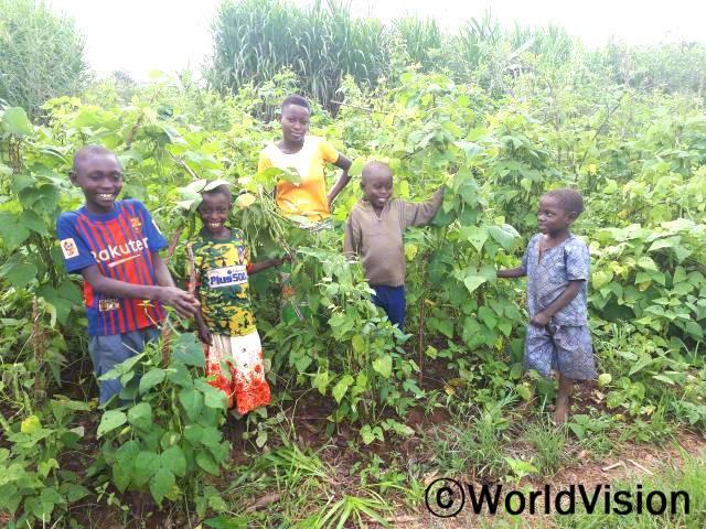 새로운 농업 기술 덕분에 콩 수확량이 늘었어요! 부모님께서는 콩을 팔아서 저희 옷이나 학용품을 사주세요.천연 재생법으로 농사 짓고, 관리하도록 돕는 학교 동아리도 생겼어요. - 스티브(10세)년 사진