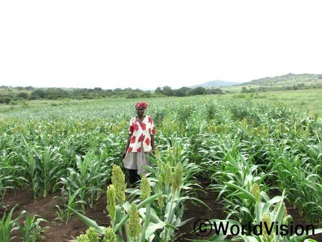 가뭄에도 잘 자라는 작물들을 알려주셔서 감사해요. 이제 아이들이 학교 가기 전이나 학교에 다녀 온 후 밥을 먹을 수 있게 돼서 행복해요. -시봉길레(50세)년 사진