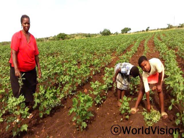 """""""전에는 가뭄에 취약한 농작물을 재배해서 수확량이 저조했는데 월드비전의 도움으로 가뭄에 강한 농작물이 무엇인지 알게 되었습니다. 덕분에 이제는 목화를 재배하고 판매해서 아이들의 학교 준비물을 구입하고 끼니도 해결할 수 있게 되었답니다."""" –노마(42세)년 사진"""