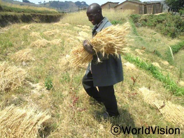 지원 받은 밀 종자를 심어 수확도 늘고 수입도 늘었어요. 이제 가족들이 필요한 것들도 살 수 있고 아이들에게 아침으로 죽도 줄 수 있어요. -프랑수아(아빠, 농부)년 사진