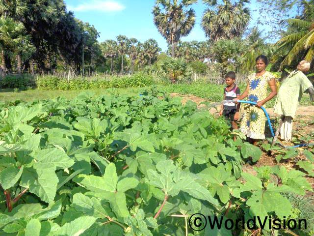 가뭄이었던 기간에도 우리 가족이 충분한 물로 농사일을 계속할 수 있었어요.  니란자라(32세)씨의 말입니다. 월드비전의 도움으로 물펌프를 지원받은 20 가정은 계속해서 농사를 지을 수 있었습니다.년 사진