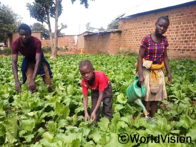 아이들은 부모님을 도와 텃밭에 씨를 뿌리고 물을 주고 있습니다. 이들의 부모님은 월드비전의 도움으로 텃밭 가꾸기 훈련을 지원받았습니다.년 사진